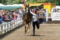 Коня на скаку