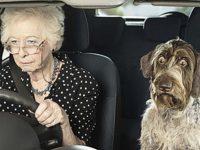 Возраст водителя
